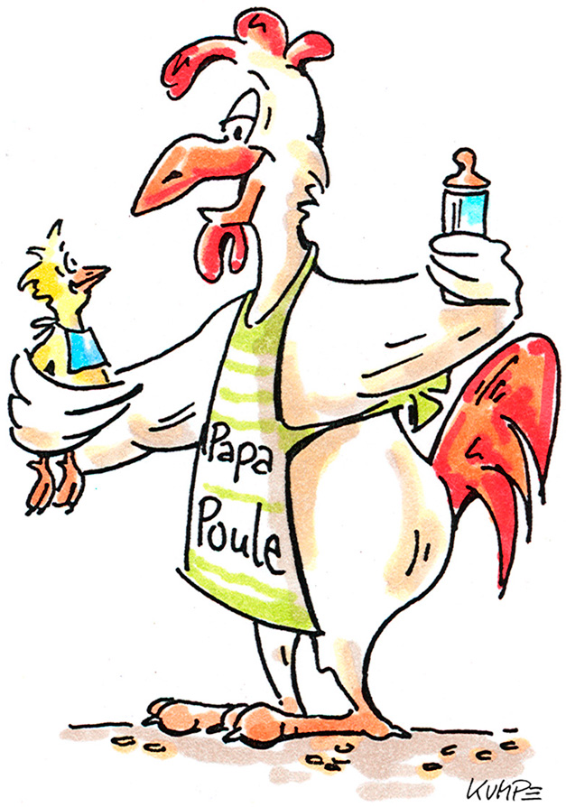 Papa Poule Cartoon