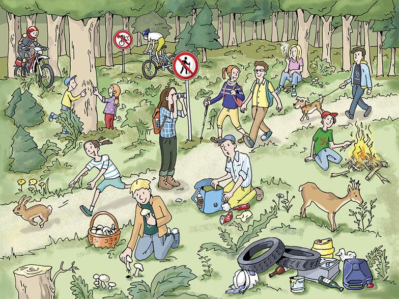 Einfach Bio Wald Wimmelbild